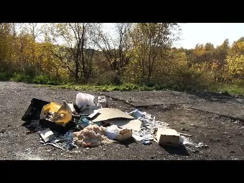 Почему убирают контейнеры для мусора